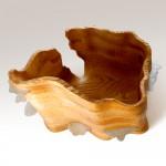 Shelf Mushroom Bowl